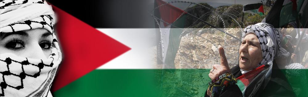Social justice in Palestine